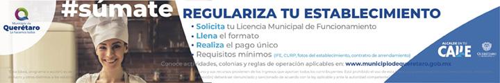 Municipio Qro Marzo 2019